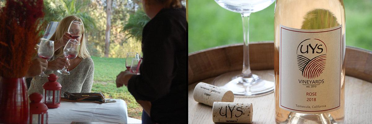 Wine Appreciation Workshops